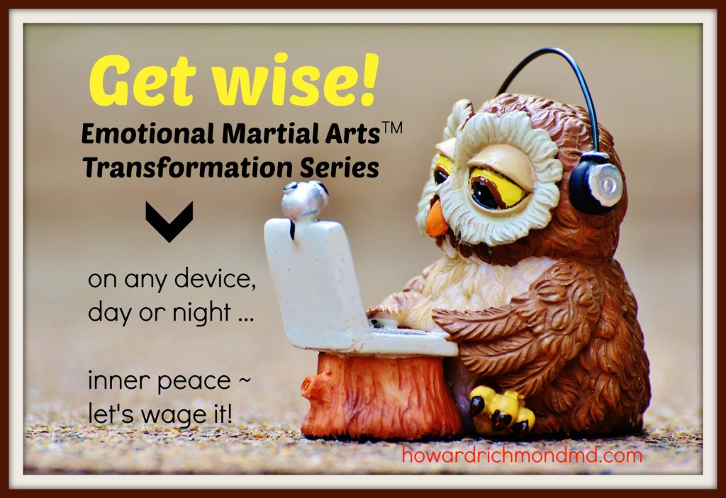 owl with EMA transformation series