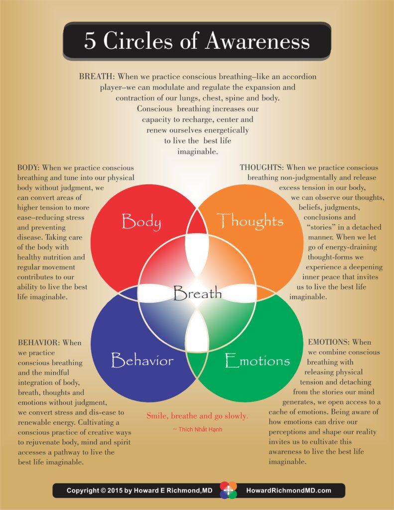 five-circles-of-awareness-2015